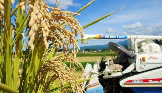「新米」収穫!コンバインでの収穫方法(現場レポート)
