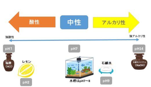 ☆水質管理☆「pH」について