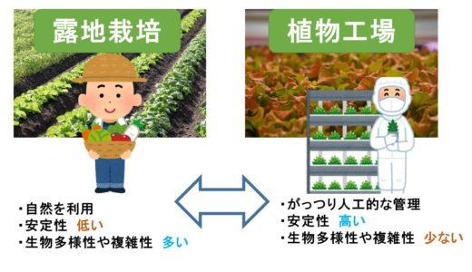 「植物工場」とは?新規ビジネスとして儲かるのか?