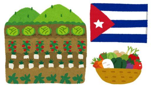 キューバの有機農業が日本の農業復活のカギになる!?