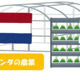 オランダの農業・植物工場