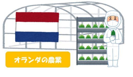「オランダの農業」と「日本の農業」の違いを徹底比較!日本ではオランダ型の農業は向いてない!?